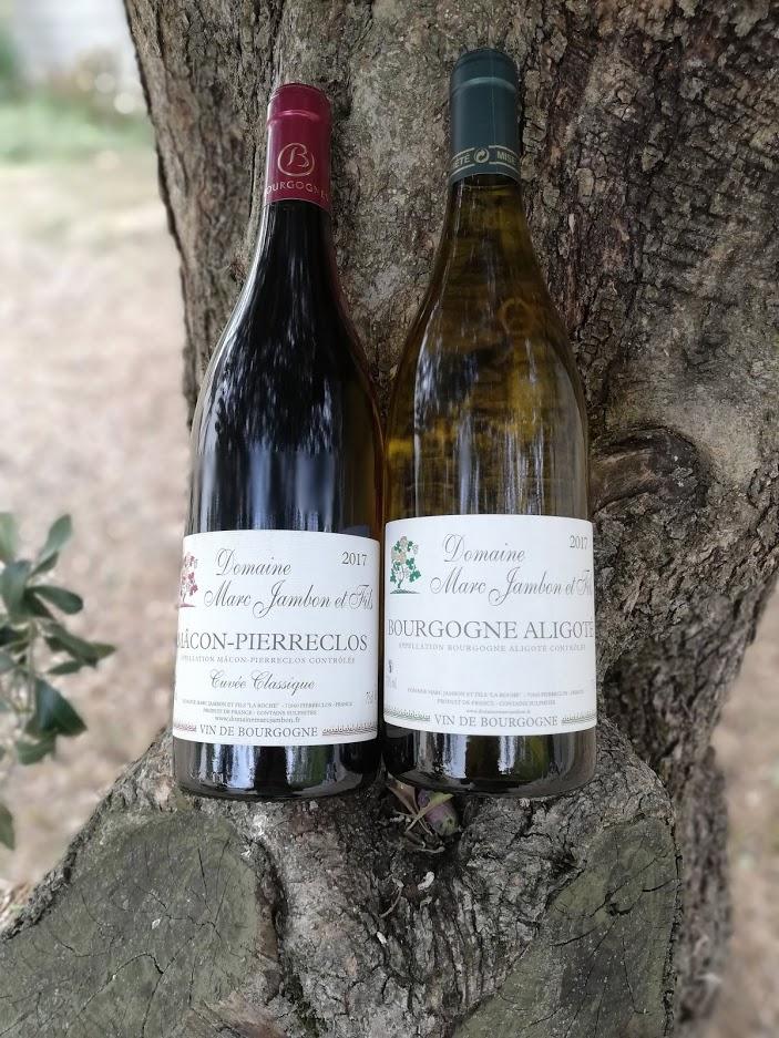 Bourgogne aligoté et cuvée classique  - Domaine Marc jambon et Fils