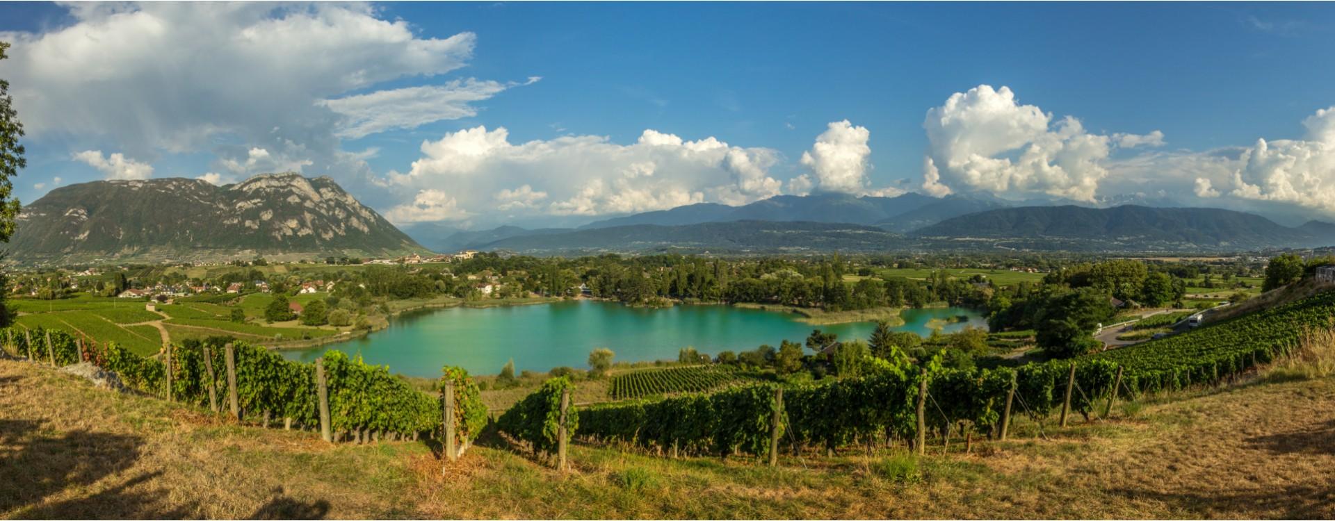 Tout savoir sur les vins de Savoie